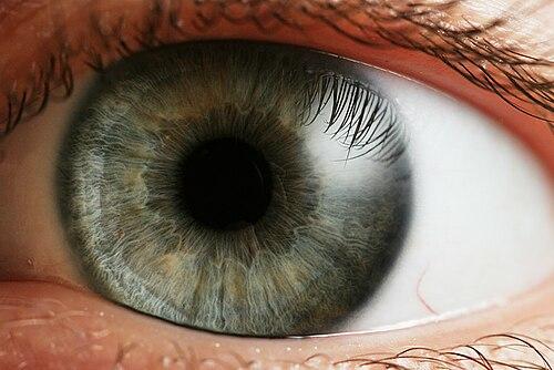 jó látású szem