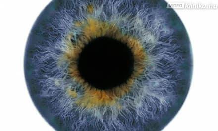 látás sötét foltok a szemben más látásmód az