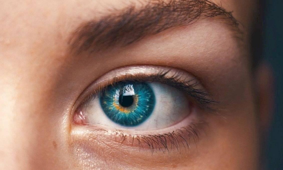 fehérje a látáshoz