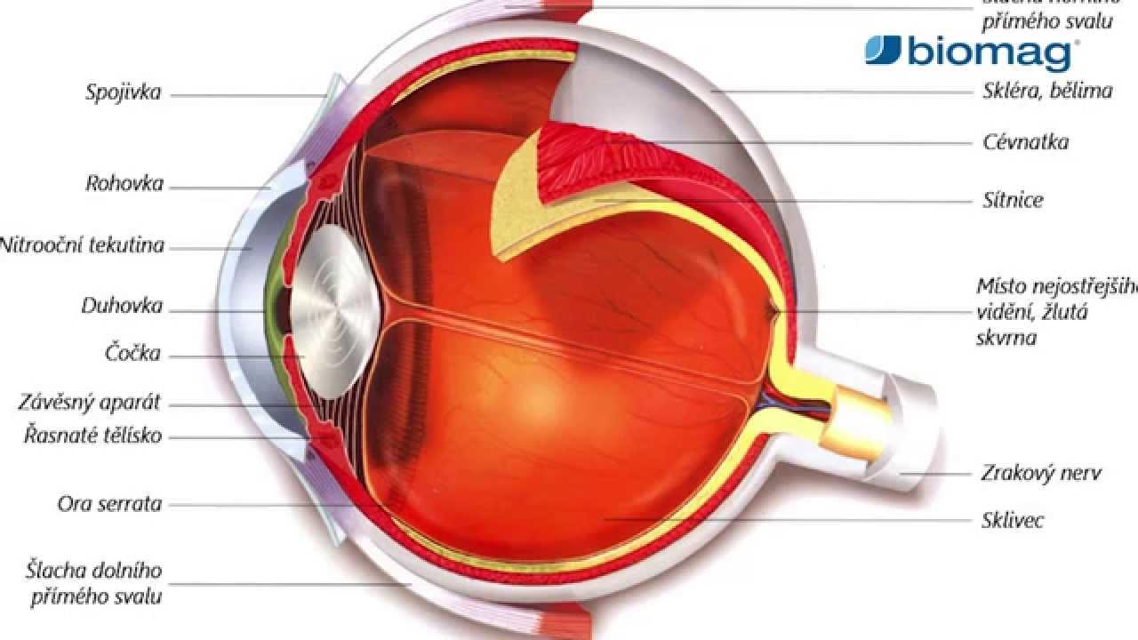 myopia otthoni kezelés