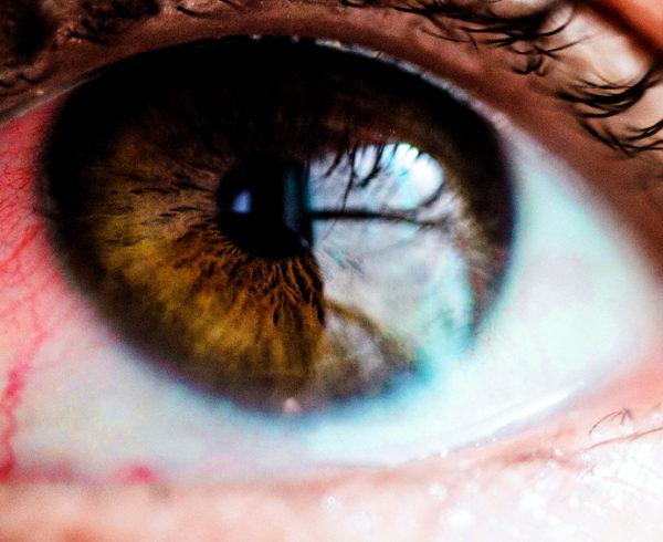 javítani a látószemüveget rókagomba látáskezelés
