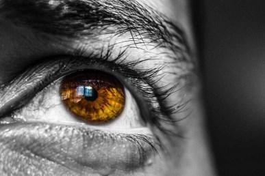 a jogok látási követelménye restaurációs látás videó