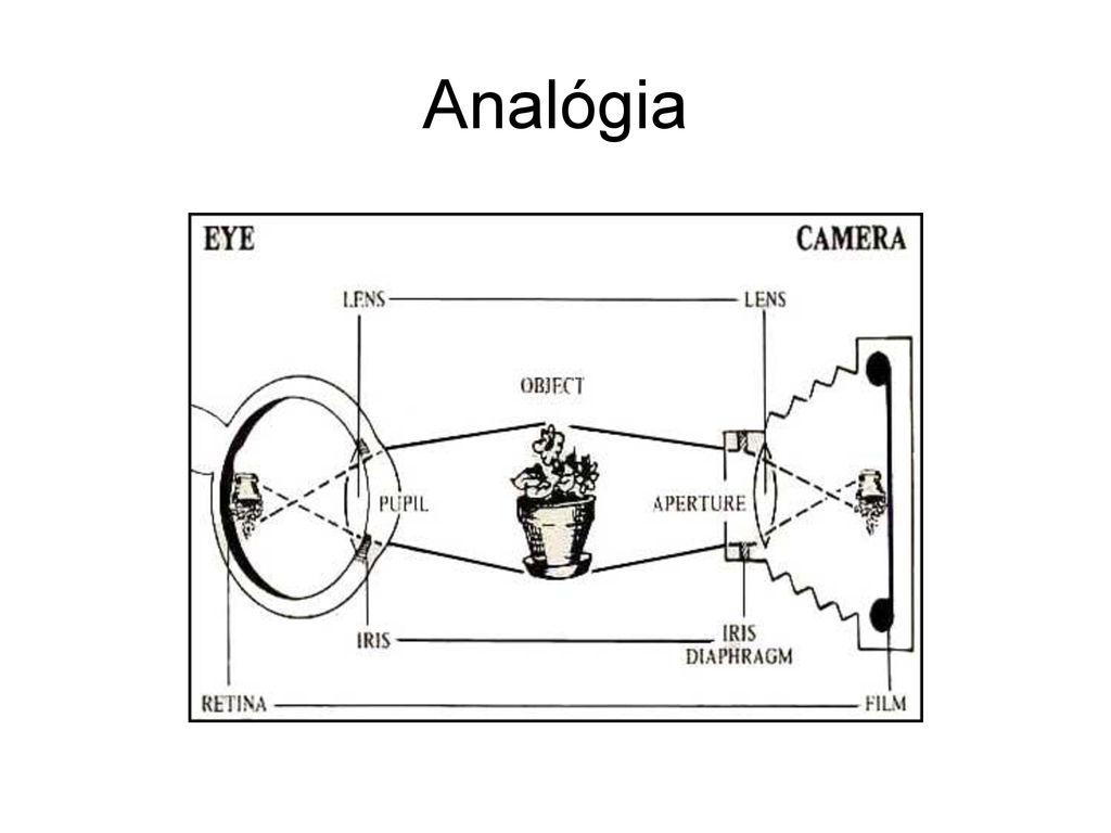 hogyan lehet növelni a látás kontrasztját denis nézet
