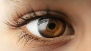 mennyire befolyásolja a magas koleszterinszint a látást táplálék a látásélesség számára