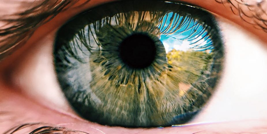 új jövőkép a mazyrban mit jelent a látás?